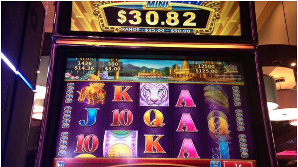 Bonus slot machines game features